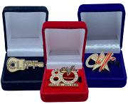 !!!NEW!! Cliff Richard Brooches - BUY ALL 3 HERE FOR £30 - SAVE £6